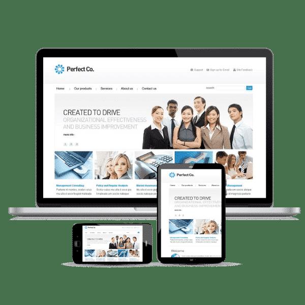 Business-Website-Design-v1a